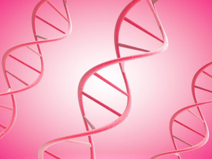 DNA婚活サービスとは