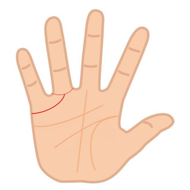 結婚線が薬指の根元まで達している