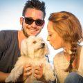 犬同伴の旅行を彼氏に提案する