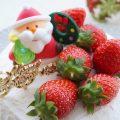 今年のクリスマス・イブ誰と過ごす?