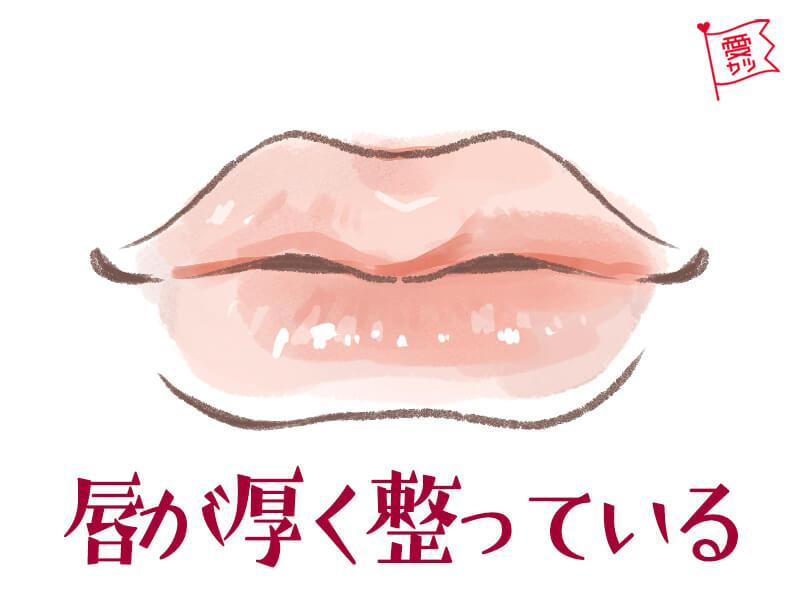 両唇が豊かな男子は正直