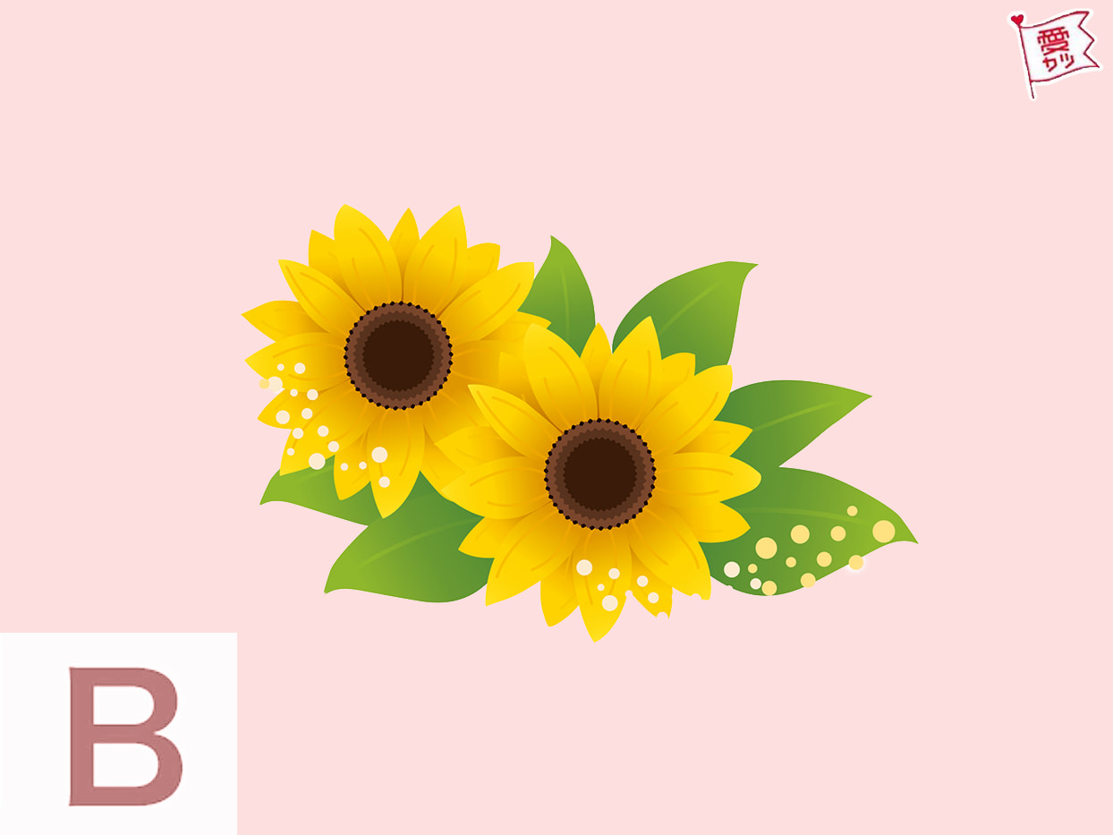B:「花」を選んだあなた