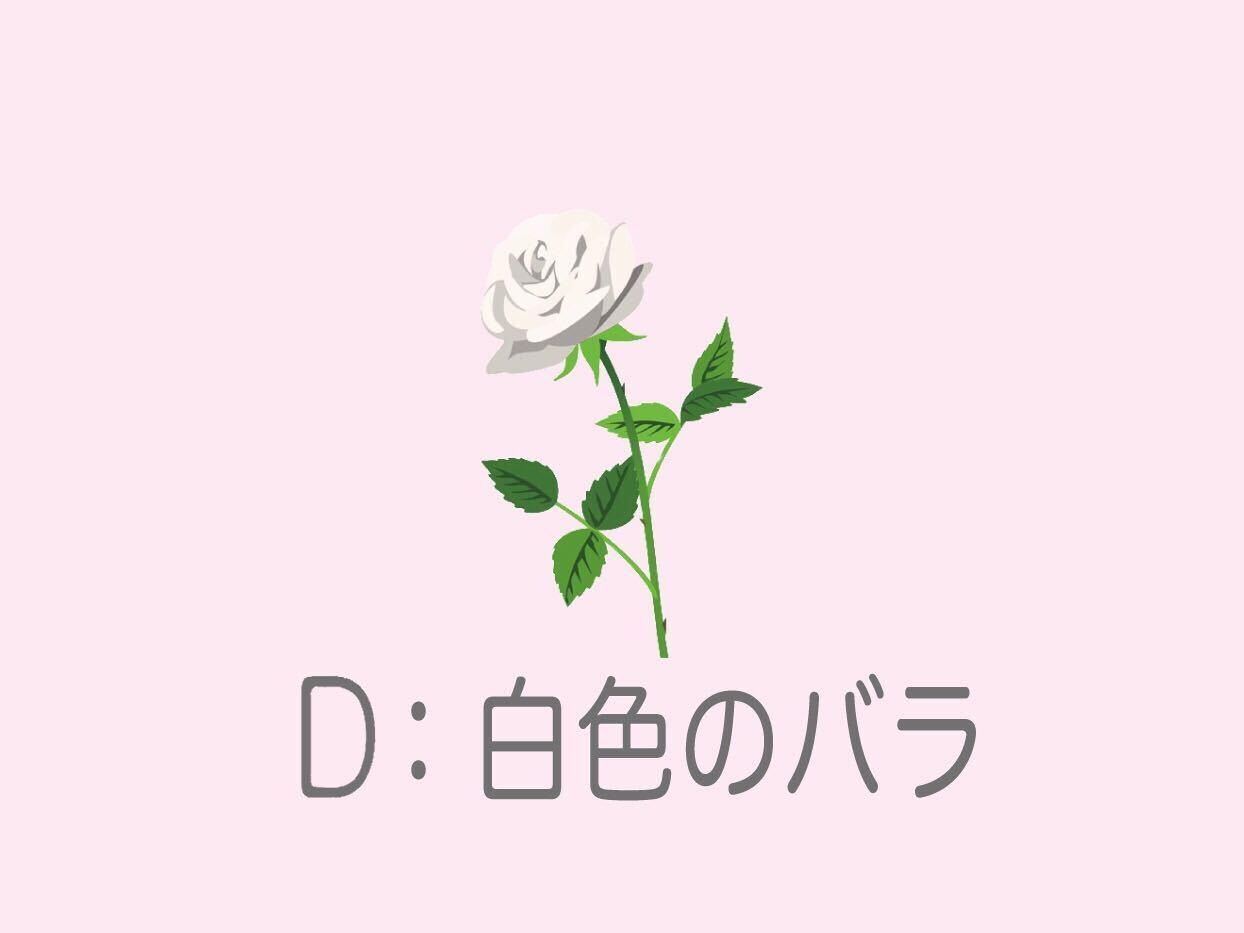 D:「白いバラ」を選んだあなた